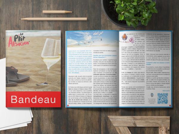 Encart publicitaire - Magazine Alsacien - Première de couverture