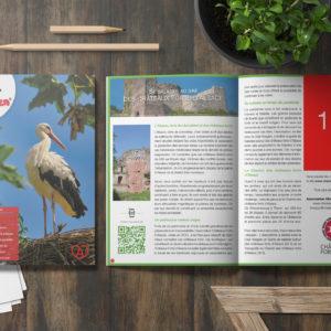 Encart publicitaire - Magazine Alsacien - Quart de page