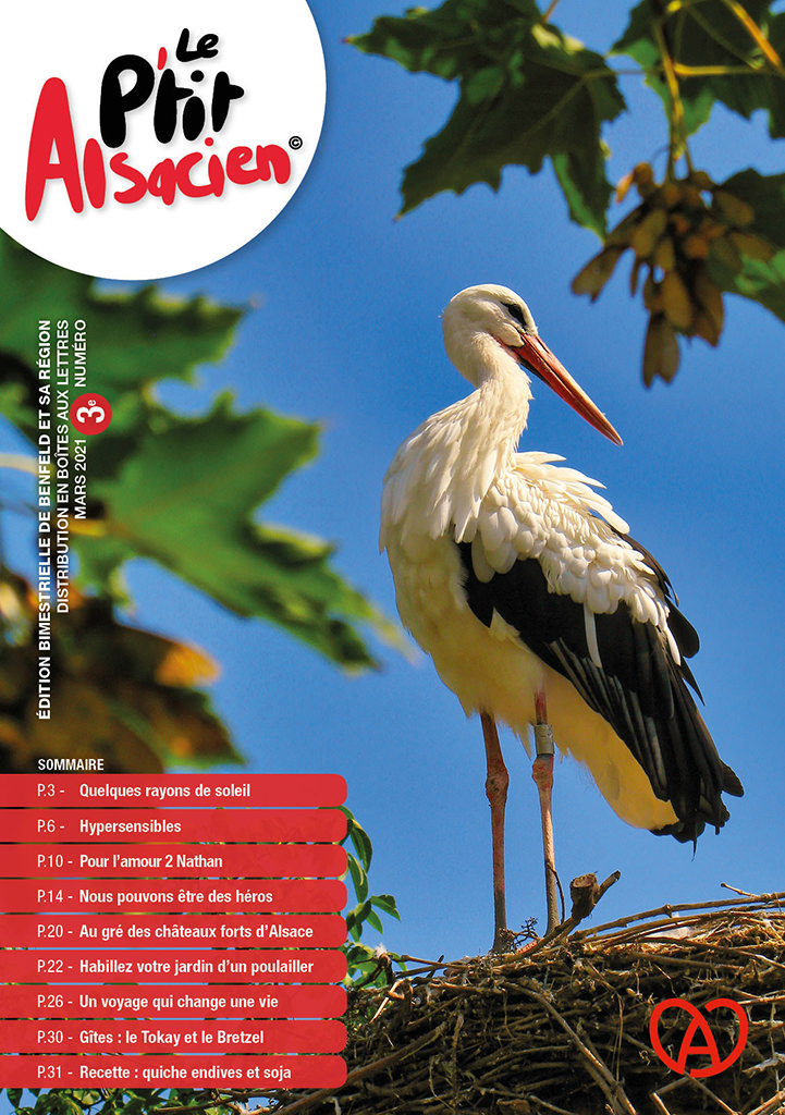 Magazine Le P'tit Alsacien - Benfeld mars 2021