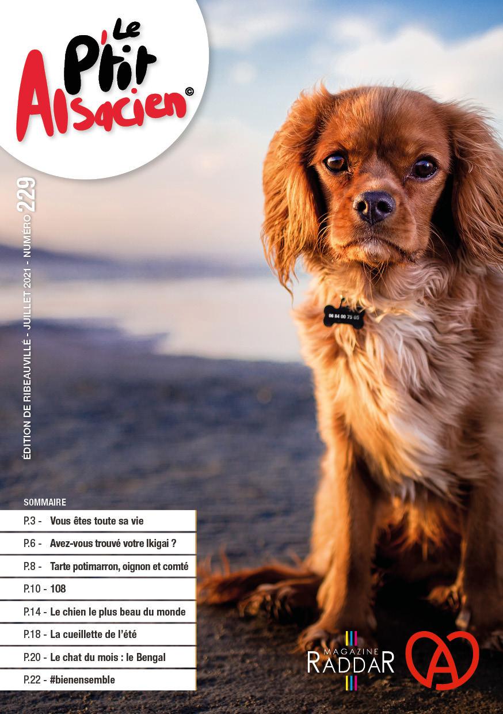 Magazine raddar - Juillet 2021